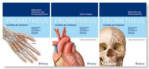 Medizinlehrbuecher.de > Anatomieatlanten